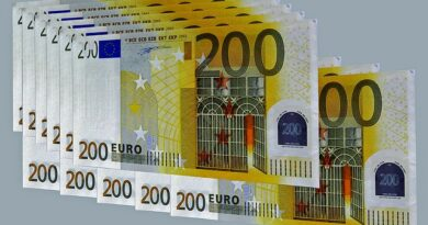 Prestiti immediati da privati